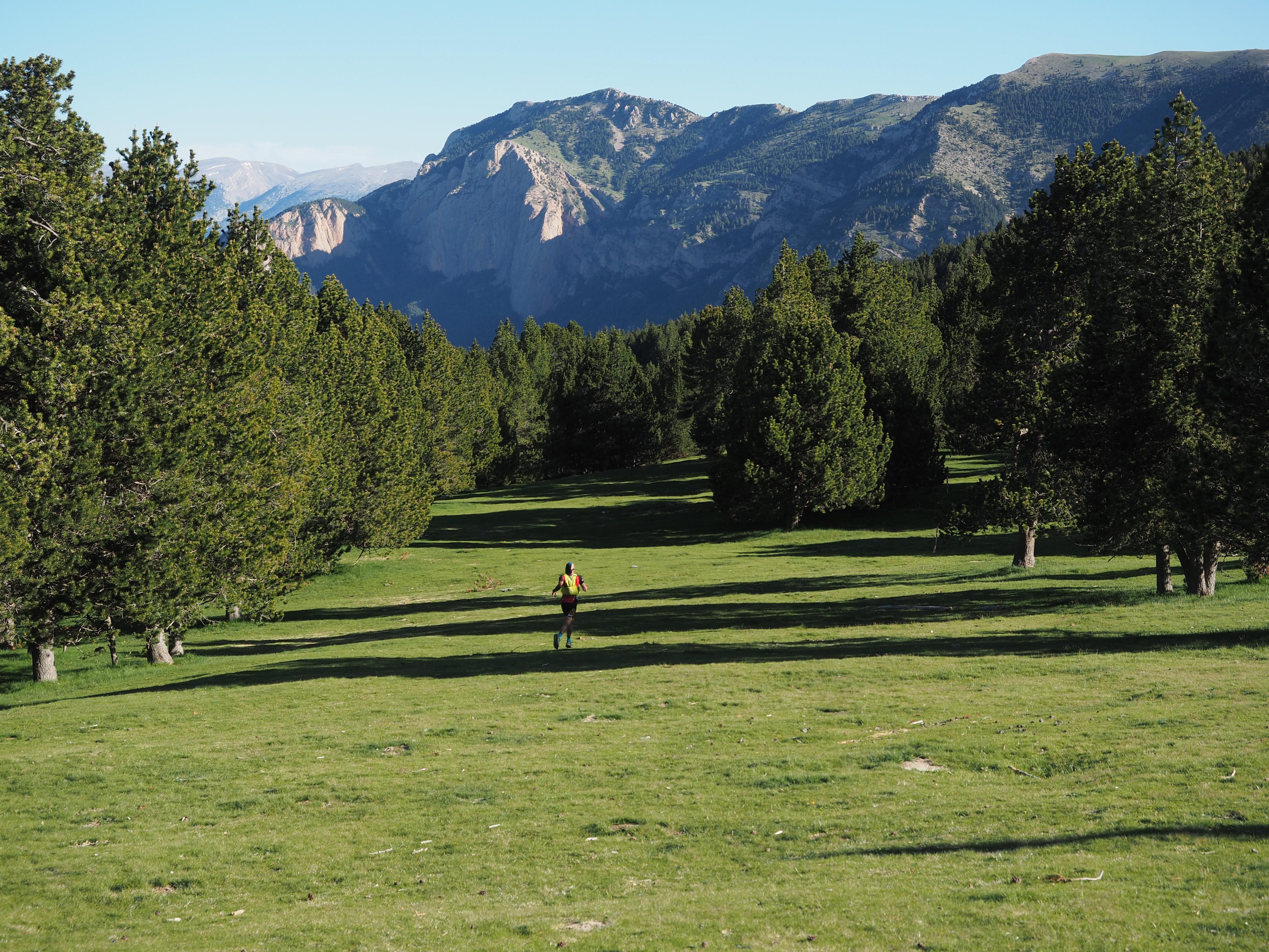 Un corredor de la Berga Trail als Rasos de Peguera camí d'Ensija. FOTO: Anna E. Puig