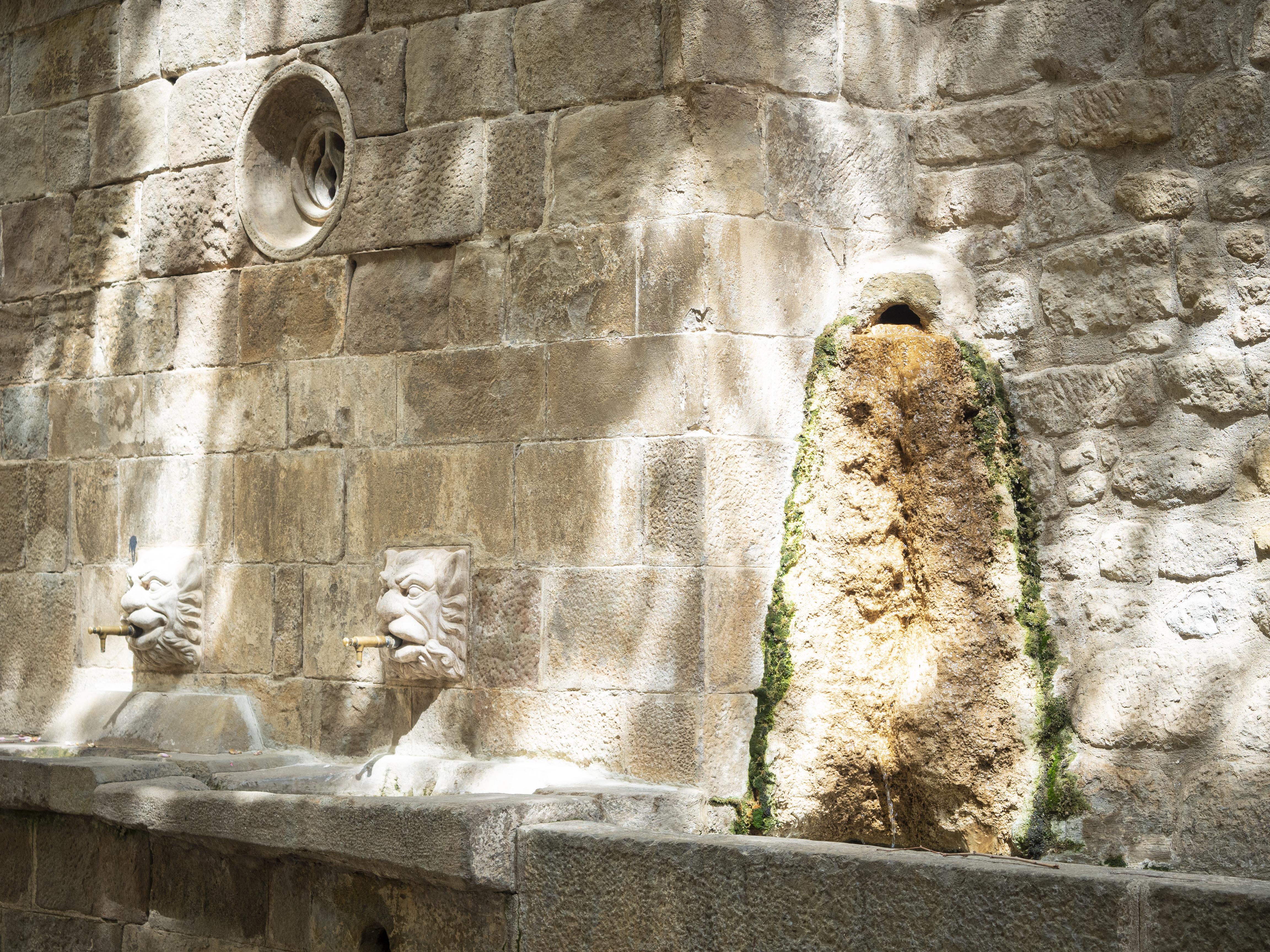 El casc antic està ple de petits tresors, com per exemple aquestes fonts gòtiques. FOTO: Anna E. Puig