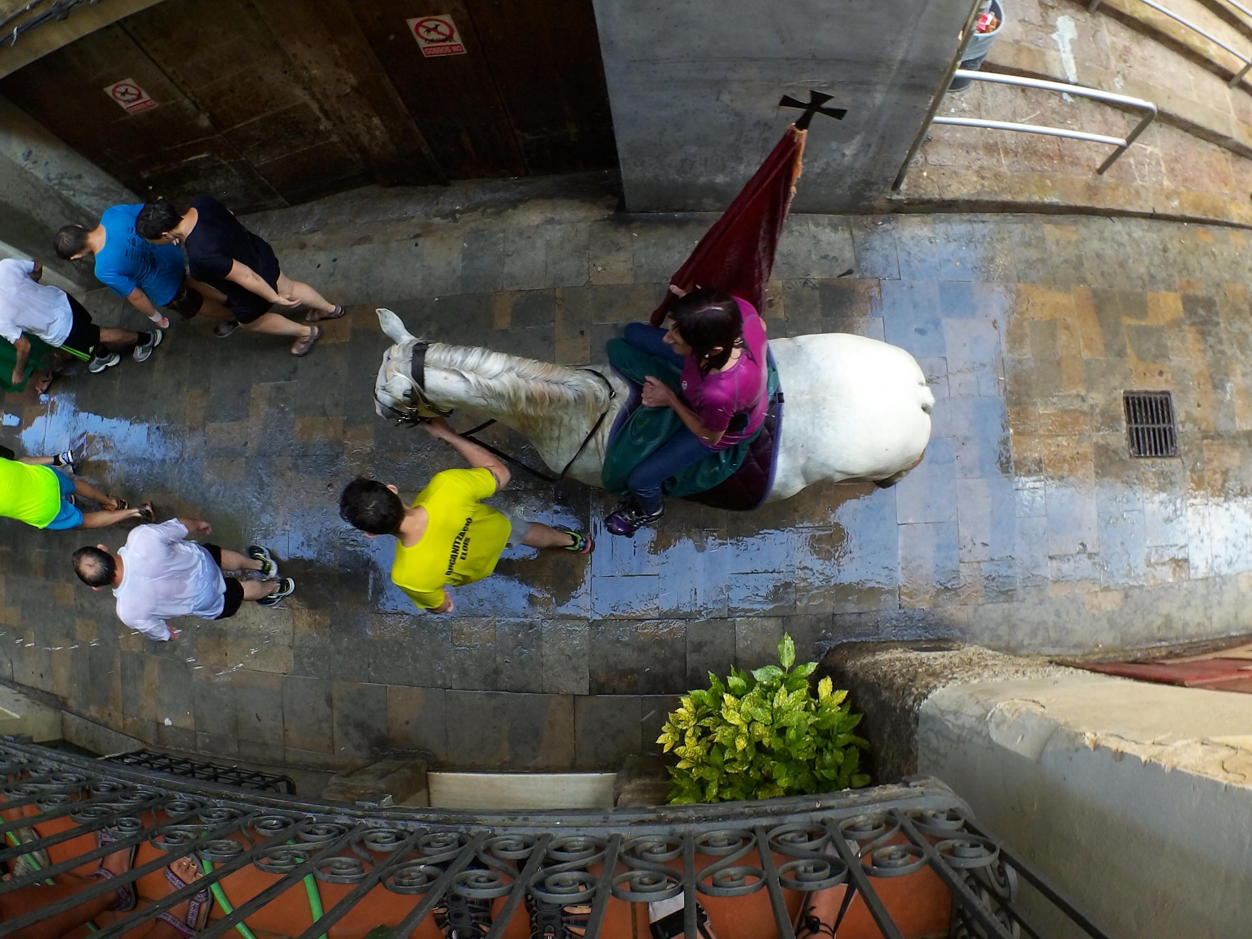 La bandera la confraria de Sant Eloi remullada als carrers del casc antic de Berga. FOTO: Anna E. Puig