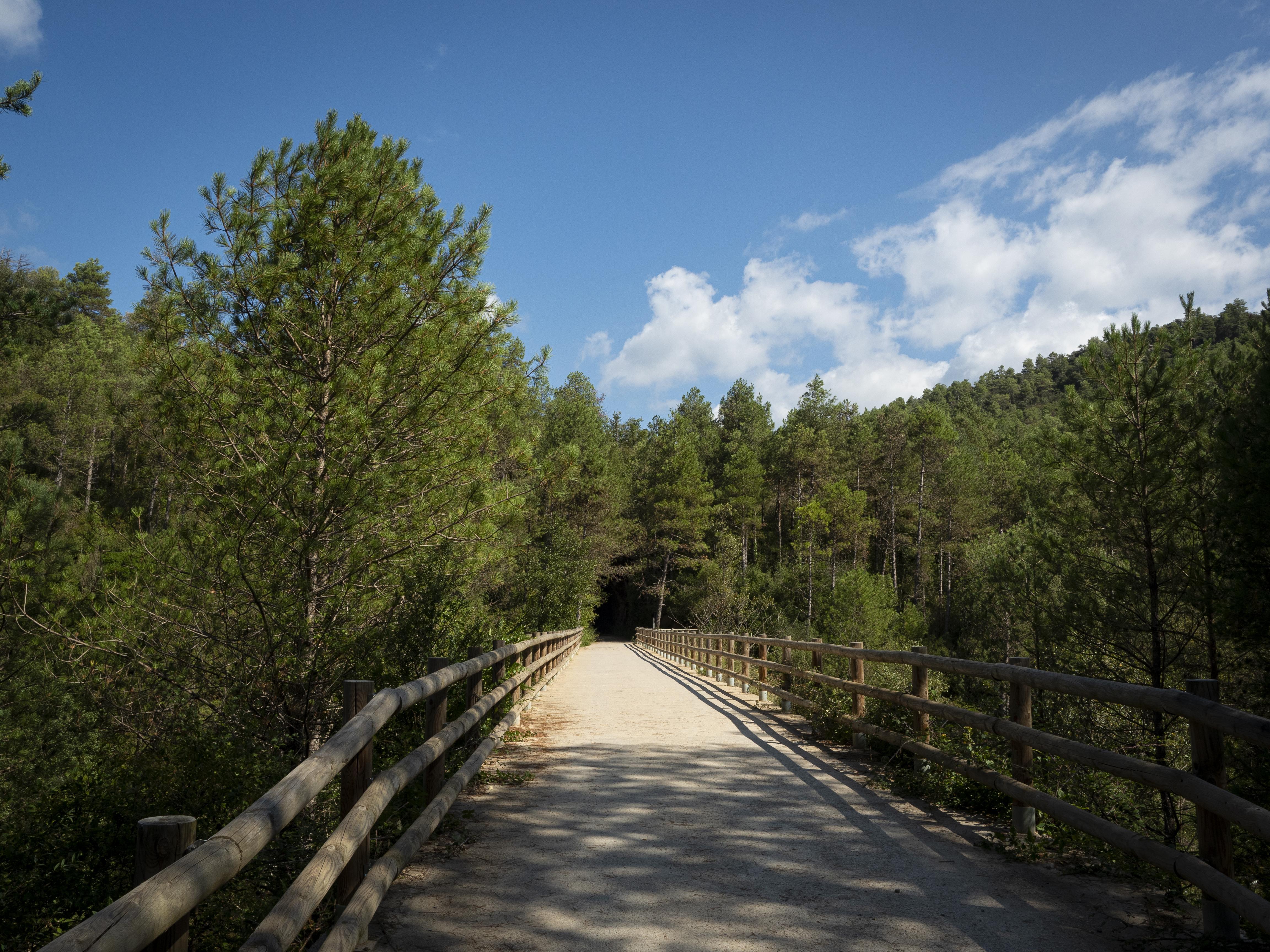 Pont a la Via Verda de Cal Rosal a Pedret. FOTO: Anna E. Puig