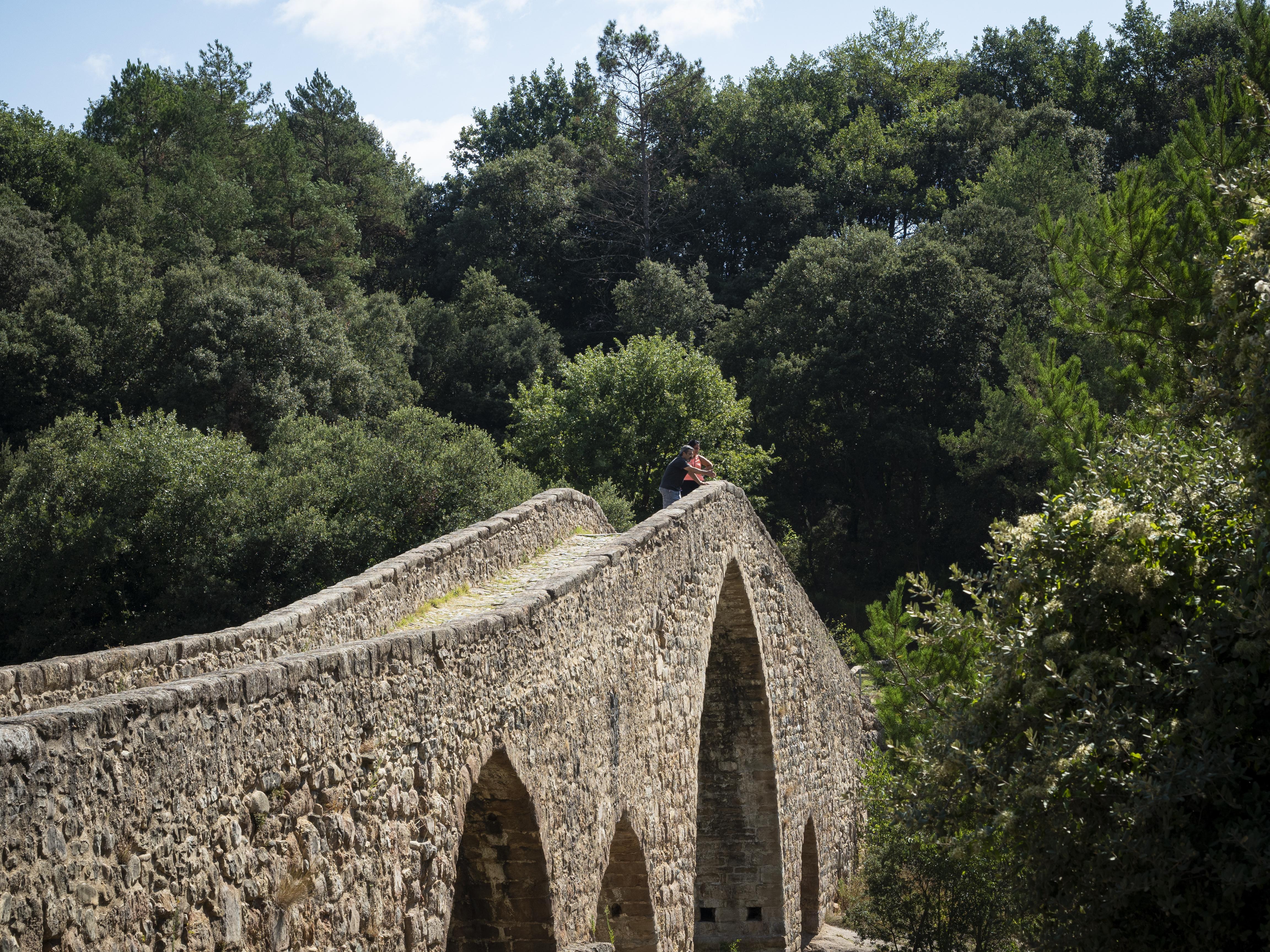 Pont de Pedret. FOTO: Anna E. Puig